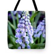 Grape Hyacinths Closeup Tote Bag