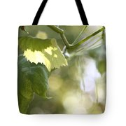 Grape Leaf Tote Bag
