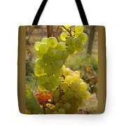 Grape Spiral Tote Bag by Patricia Overmoyer