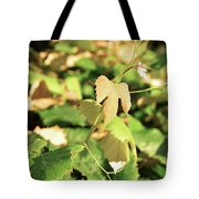 Grape Vine 3 Tote Bag