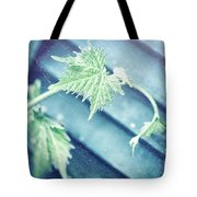 Grape Vine Old Style Background Tote Bag