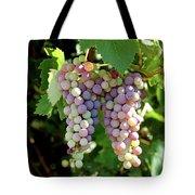 Grapes In Color  Tote Bag