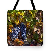 Grapes Of The Napa Valley Tote Bag by Garry Gay