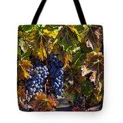 Grapes Of The Napa Valley Tote Bag