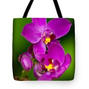 Grapette Ground Orchid Tote Bag