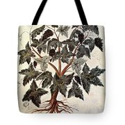 Grapevine, 1229 Tote Bag