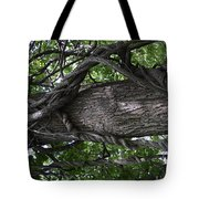 Grapevine Covered Tree Tote Bag
