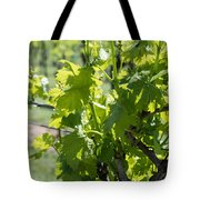 Grapevine In Early Spring Tote Bag