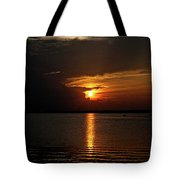Grasping The Light Tote Bag