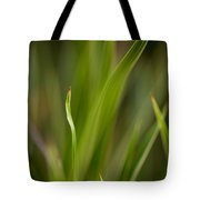 Grass Abstract 1 Tote Bag