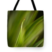 Grass Abstract 2 Tote Bag
