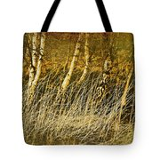 Grass And Birch Tote Bag