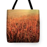 Grass Dyed In The Morning Glow Tote Bag