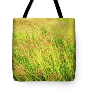 Grass Field Landscape Illuminated By Sunset Tote Bag
