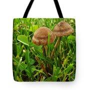 Grass Mushroom Pair           Tubaria Fungii           May           Indiana Tote Bag