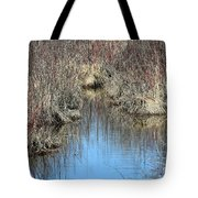 Grass Reflections Tote Bag
