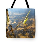 Grass Spears In Still Water Tote Bag