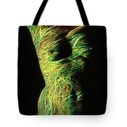 Grasses Tote Bag by Arla Patch