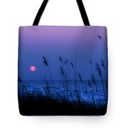 Grasses Frame The Setting Sun In Florida Tote Bag