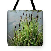 Grasses With Seed Heads Tote Bag