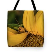 Grasshopper In Sunflower Tote Bag