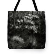 Grasstrees Tote Bag