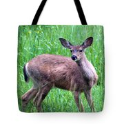 Grassy Doe Tote Bag