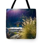 Grassy Sun Rays Tote Bag