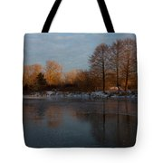 Gray And Amber - An Early Winter Morning On The Lake Shore Tote Bag