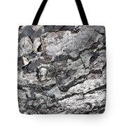 Gray Bark Tote Bag