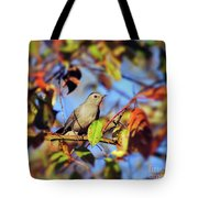 Gray Catbird Framed By Fall Tote Bag