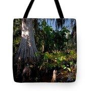 Gray Cypress Tote Bag
