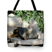 Gray Fox 4 Tote Bag