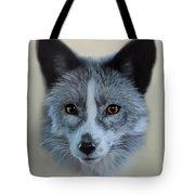 Gray Fox Head Study Tote Bag