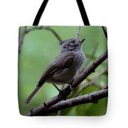 Gray Grey Bird 052814a Tote Bag