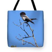 Gray Hawk Retreat Tote Bag