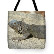 Gray Iguana With Long Talons Sitting On A Rock Tote Bag