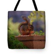 Munching Squirrel Tote Bag