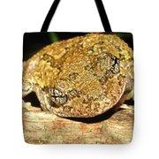 Gray Tree Frog Horizontal Tote Bag
