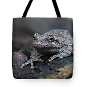 Gray Treefrog On A Log Tote Bag