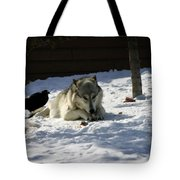 Gray Wolf 3 Tote Bag