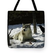 Gray Wolf 4 Tote Bag