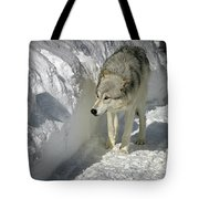 Gray Wolf 7 Tote Bag