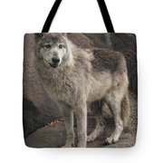 Gray Wolf On A Rock Tote Bag