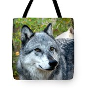 gray Wolf Pair Tote Bag
