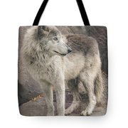 Gray Wolf Profile Tote Bag