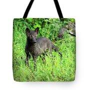 Gray Wolf Pup Tote Bag