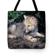 Gray Wolf Pup With Prey Tote Bag