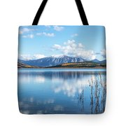 Grayling Bay Tote Bag
