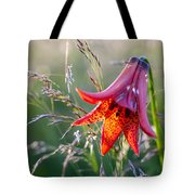 Gray's Lily Roan Mountain Highlands Tote Bag